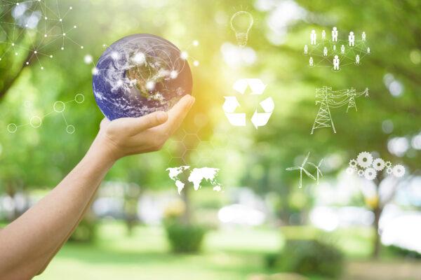 Environmental Management System Auditor