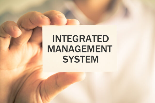 integrated management system auditor